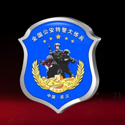 湖北万博体育app官方下载  全国公安民警大练兵荣誉证章万博体育app官方下载